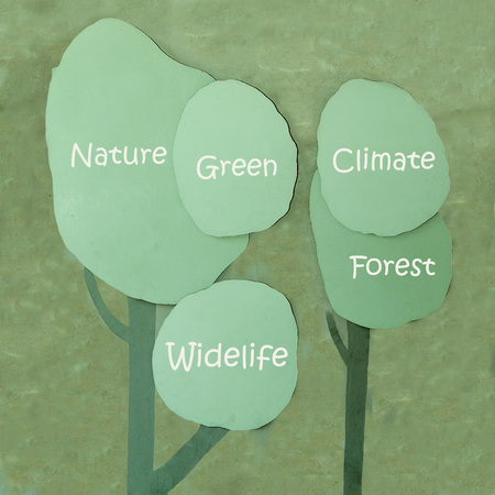 Concept or conceptual of nature,green,wildlife,climate,forest Stock Photo - 25306037