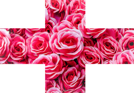 Artificial pink rose across line photo