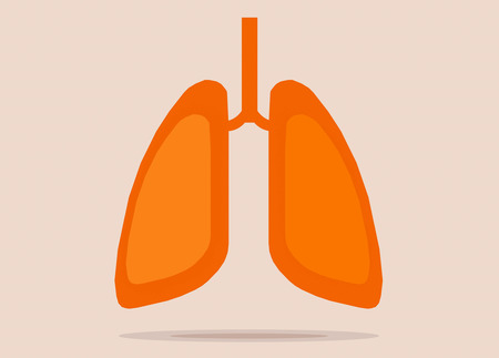 pulmonology: Lungs flat icon with reflect shadow vector illustration