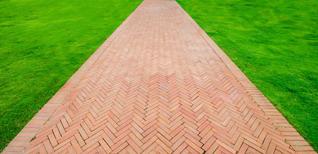 Walk path with green grass background