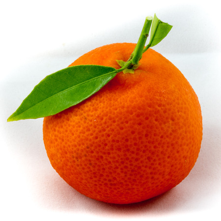 clementine fruit: Single fruit of a clementine Stock Photo