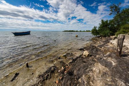 camargue: Moored boat in a pond, Camargue, France