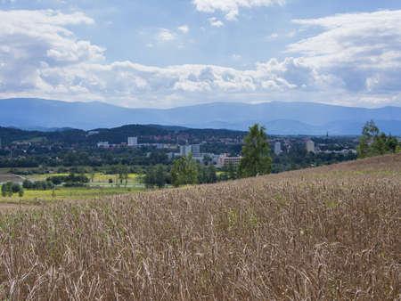 Wheat Field In A Hilly Landscape In Jelenia Gora, Silesia, Poland Stock Photo
