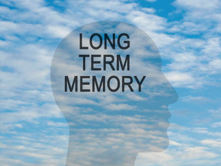 long term: Words Long Term Memory On Transparent Head Silhouette Against A Blue Cloudy Sky, illustration Stock Photo
