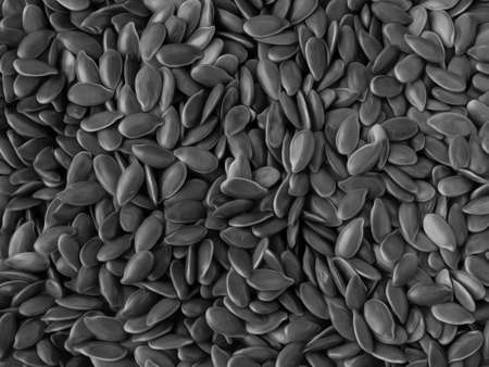 Monochrome Close-up of Flaxseeds, Black And White Food Background In Oil Painting Style Zdjęcie Seryjne