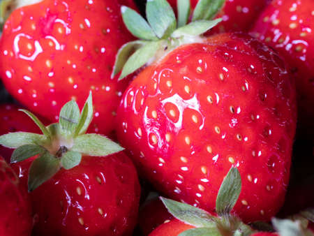 Close-up of Freshly Harvested Strawberries Фото со стока