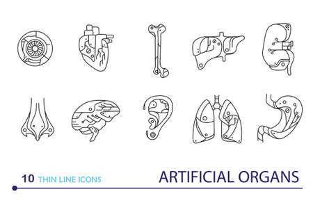 transplants: Thin line icons  artificial organs. EPS 10. Isolated objects Illustration