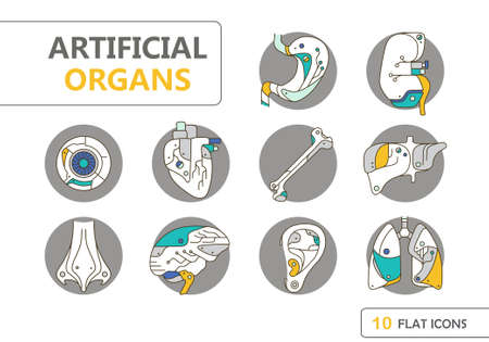 transplants: Flat icons - artificial organs. EPS 10. Isolated objects