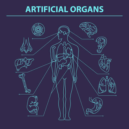 transplants: Artificial organs. Thin line. EPS 10 Isolated objects