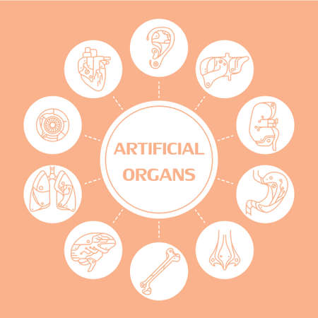 transplants: Thin line icons artificial organs. EPS 10. Isolated objects