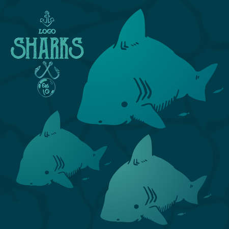 lad: cute fubsy sharks are perfect , print on t-short, or as a design element to your website.