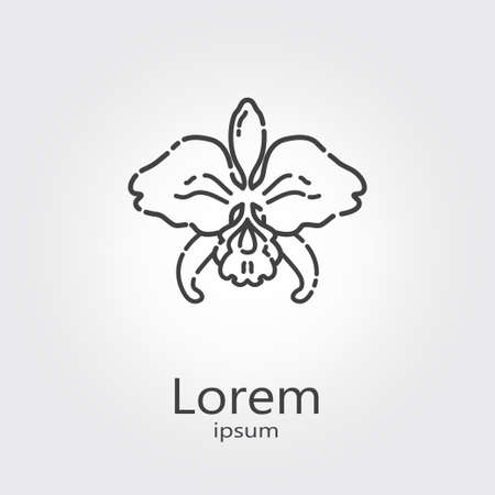 Design template - orchid