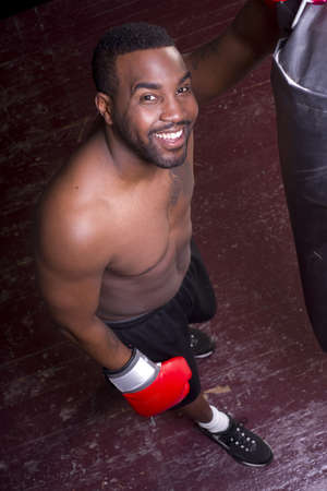 active lifestyle: A boxer pauses and looks up at the camera