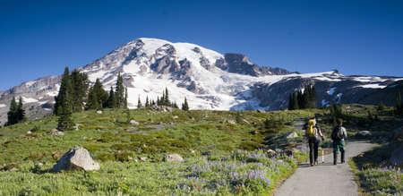 Mt  Rainier and Wildflowers in Bloom Stock Photo - 15606499