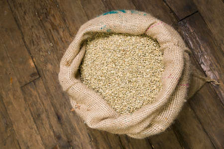 cash crop: Raw Coffee beans waiting to be roasted still in the Burlap Bag Stock Photo