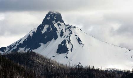 cascade range: Mt. Washington stands in the clouds after a recent forst fire