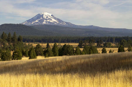 adams: Mt Adams looms over lush ranch land in Washington state Stock Photo