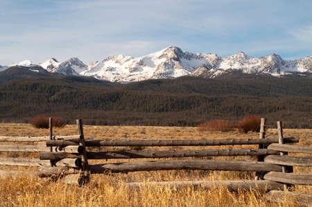 foothills: Sagebrush and Grass in Landscape flatland near mountain foothills
