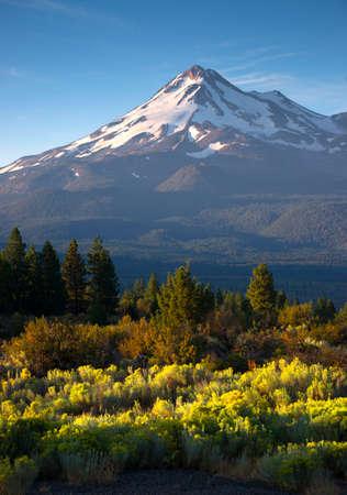 Vertical composition over sage brush Mt Shasta California