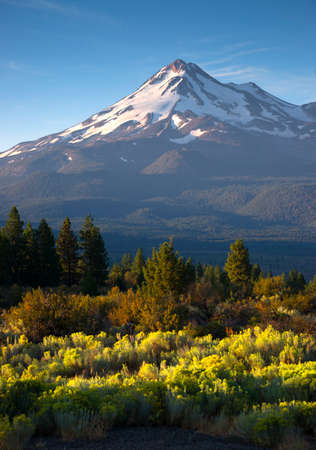 travel features: Vertical composition over sage brush Mt Shasta California
