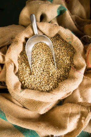 Big sack of coffee beans waiting to be roasted in coffee roaster warehouse photo