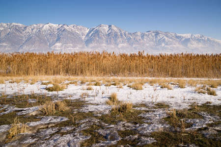 wasatch: Contrast between valley landscape and rugged mountaintops Stock Photo