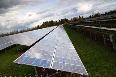 popularity: Solar energy is gaining popularity and a sun farm is shown here