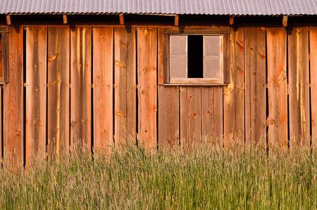 vastness: Barn wood wall green farm field