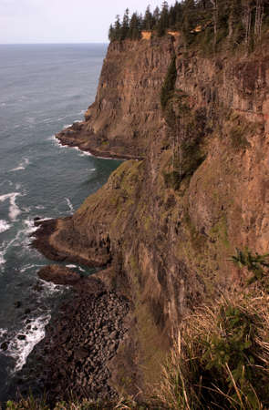 Vertical composition bluff overlook Pacific Ocean  photo