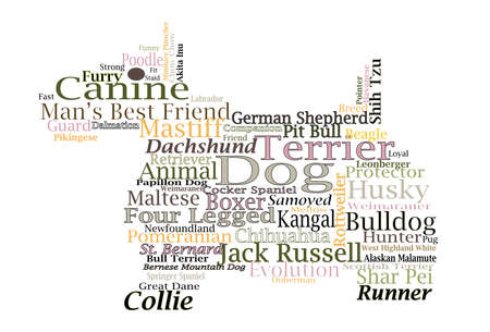 border collie: Canine Themed Dog Word Cloud Typography Illustration