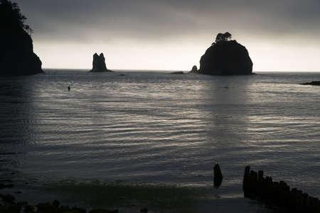Stacks Bluffs Pacific Ocean West Coast photo