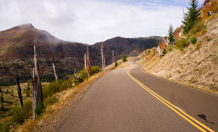 land management: Still Damaged Landscape Blast Zone Mt St Helens Volcano