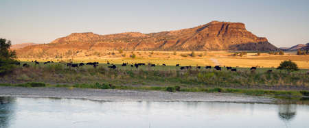 The sun has almost set over this cattle ranch in Oregon desert land photo