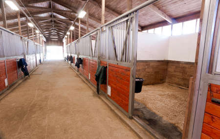 granja animales: Caballo Granero Animal Deporte Paddock Ecuestre Rancho Racing Stable