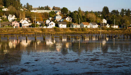 pilings: Old pilings fill the bay in Astoria