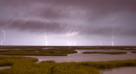 hammered: Marshy area in the Gulf of Mexico gets hammered by storms