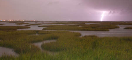 marshy: Marshy area in the West Bay get hammered by storms