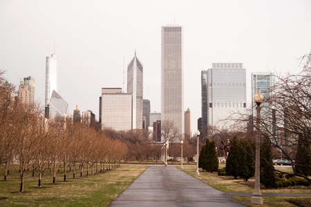 midwest usa: Trees line the walkway in Grant Park downtown Chicago