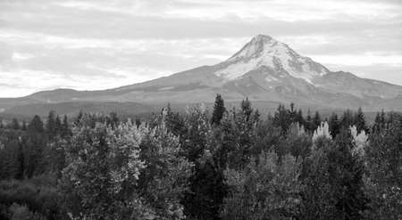 mt hood national forest: Mount Hood stands alone in the fall at sunrise