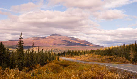 The colors turn to red, yellow, and orange during the fall in south central Alaska Stock Photo