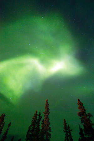 auroral: The Northern Lights appear in Wrangell St. Elias National Park