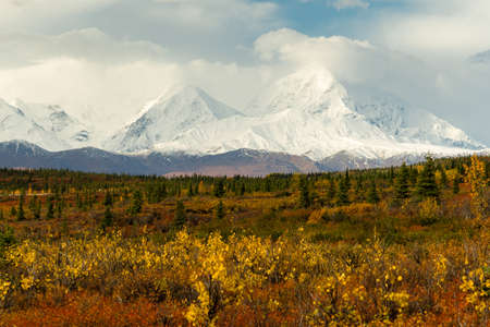 reacts: The tundra reacts to the weather in remote Alaska