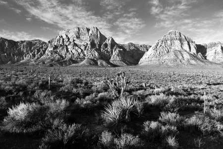 nevada desert: The sun hits Red Rocks just after dawn in the Nevada Desert Stock Photo