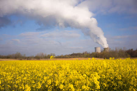 nuclear power plant: A surreal but beautiful scene with a foreground of wildflowers near a nuclear power plant on the east coast