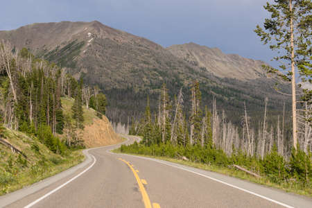 thru: The highway winds along thru vast peaks on East Entrance Road in Yellowstone