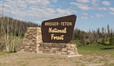 national forest: Sign marking the boundary of the Bridger Teton National Forest Editorial