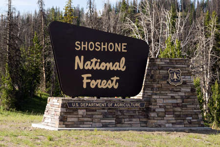 national forest: Sign marking the boundary of the Shoshone National Forest Editorial