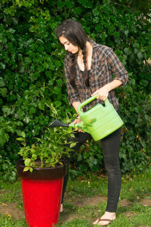 horticultural: Woman takes care of her plants carefully watering seedlings