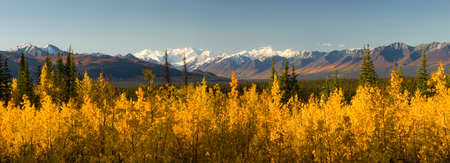 Long panoramic shot Autumn Nature Mountainous Landscape Alaska