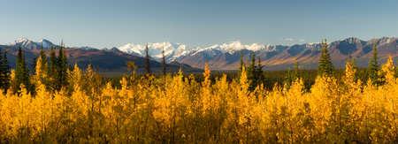 Lang panoramisch schot Herfst Natuur Bergachtig Landschap Alaska Stockfoto